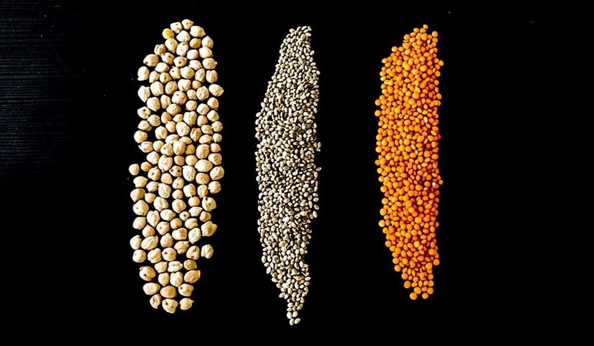 Légumineuses et graines
