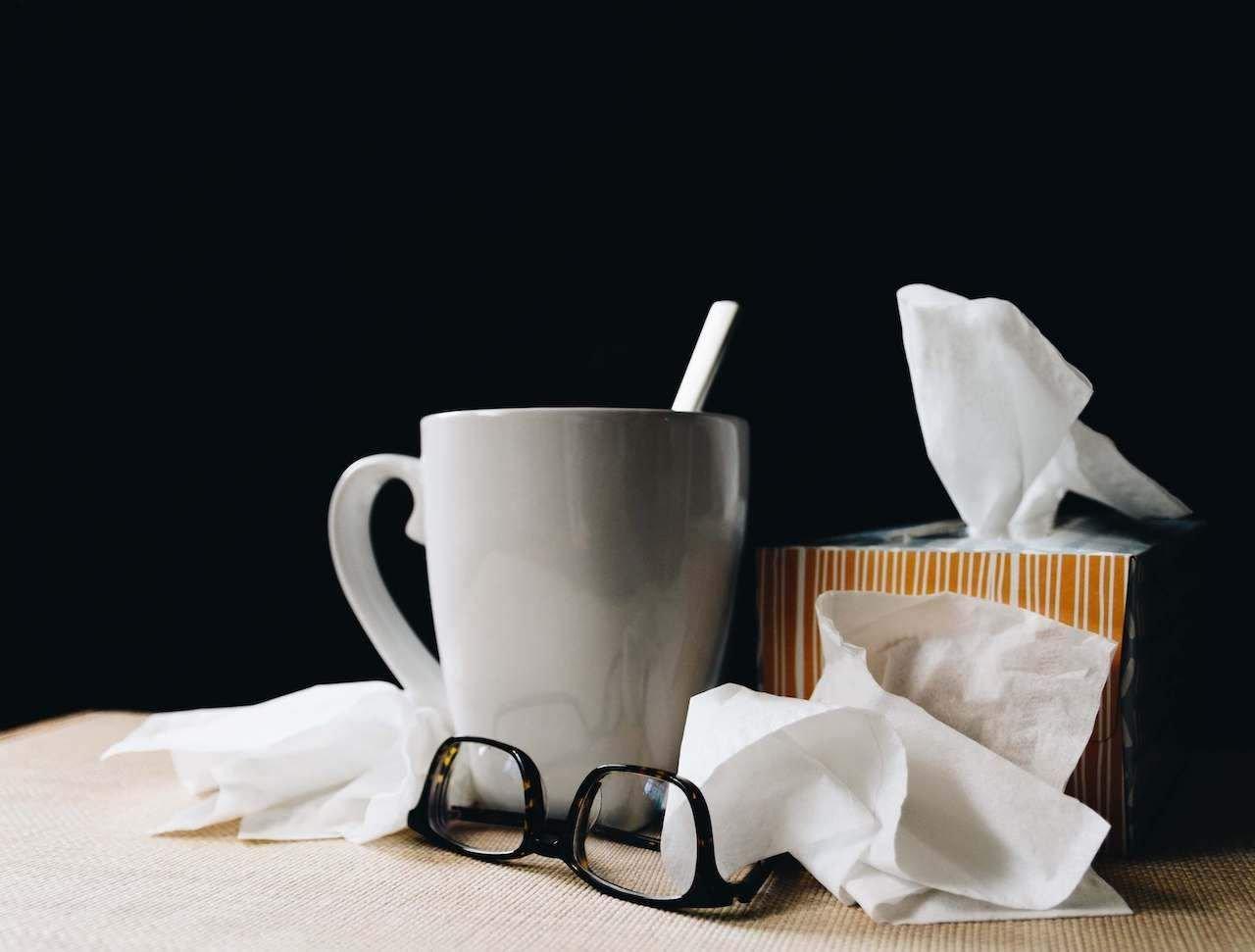 Mouchoirs, papier toilette et essuie-tout Bio
